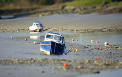 Low tide... (SteveJM2009) Tags: uk light colour water river boats march focus cornwall dof bokeh camel lowtide buoys stranded itsasmallworld banks stevemaskell tiltshift wadebridge 2013 mygearandme