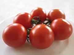 Tomato Tomate Tomaten Tomatoes Pomodoro Food Essen Nahrung (hn.) Tags: copyright food vegetables tomato healthy essen heiconeumeyer eating tomatoes vegetable eat health tomate tomaten pomodoro vitamins gemse vitamin copyrighted gesundheit nourishment nahrung nourish gesund ernhrung paradeiser