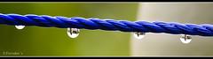 My Tiny World (VERODAR) Tags: blue reflection nikon image rope waterdrops nikond5000 verodar veronicasridar
