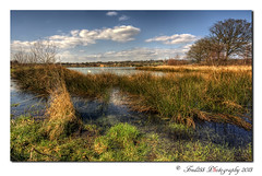 Moor Green Lake Nature Reserve (Fred255 Photography) Tags: uk lake water landscape landscapes hampshire swans fred l usm ef f4 hdr 1740 gp manfrotto waterscapes eos1ds markiii llens greatphotographers ef1740mmf4lusm ef1740mm frameit 1dsmk3 canoneos1dsmarkiii mygearandmeplatinum fred255 greaterphotographers sunrays5 bestevergoldenartists besteverexcellencegallery vigilantphotographersunite vpu2 vpu3 vpu4 greenmoorlake frameitlevel2
