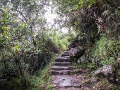 All that glitters is gold (Charlie2012RTW) Tags: peru stairs caminodelinca