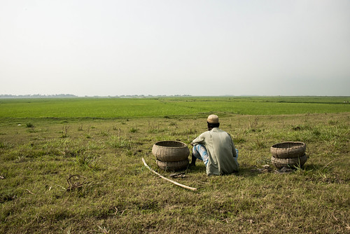 A flat landscape in Sunamganj, Bangladesh. Photo by Finn Thilsted, 2013.