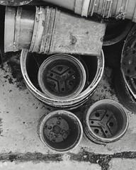 DSC_2017 (dan-morris) Tags: white house plant black green monochrome composition nikon pots 1855mm dslr vr f3556g 1855mmf3556gvr d3100