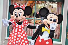 Mickey and Minnie (dolewhip) Tags: disneyland character couples disney mickey mickeymouse characters minnie minniemouse anaheim mainstreetusa disneylandresort meetandgreet disneyparks nikond90 disneycouples