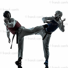 karate taekwondo martial arts man woman couple silhouette (Franck Camhi) Tags: shadow 2 two people woman white man male sports girl silhouette female cutout pose asian person one 1 exercise fulllength young couples martialarts taekwondo indoors karate whitebackground kungfu uniforms studioshot posture fighting facetoface adults protection kicking twopeople isolated position caucasian sportsequipment fightingstance exercising sportshelmet chestprotector combativesport protectivesportswear