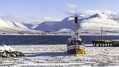 Whale watching Bjssi Sr (piparinn) Tags: winter snow port landscape iceland ship whalewatching akureyri eyjafjrur snjr vetur haf s landslag stair capturedimages