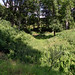 Haus Demmin - Überreste der slawischen Wallanlage