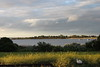 Tonight Monday - golden weeds (Lois Stephens) Tags: lines clouds golden weeds day cloudy railway australia victoria saltbush queenscliff swanisland swanbay justoneofthosenights 22apr13