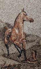 ريحانة الروح http://nnsnn.net/ (farony1) Tags: من لوحات فنية الرمال والاصداف