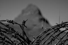 Kirkjufell (wilhelmberg) Tags: island kirkjufell iceland travel outdoor fuji fujifilm xt1 reisen landschaft landscape blackandwhite snfellsnes snafellsnes