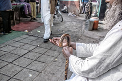 INDIA7847 (Glenn Losack, M.D.) Tags: india beggars streets portraits poverty photojournalism