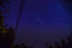 Perseids 2016 (Wilson Lam {WLQ}) Tags: meteorshower southbay
