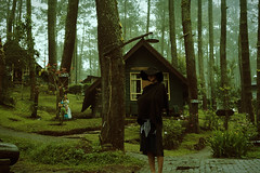 in to the wild (yann-is) Tags: nature forest indonesia bandung explore light 35mm film travel trees traveling green nikon nikonindonesia mysterious