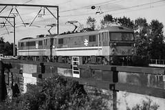 87014 Warrington D210bob (D210bob) Tags: 87014 warrington d210bob class87 westcoastmainline locomotives electriclocomotive railroad railway railwayphotography trains transport olympusom2n