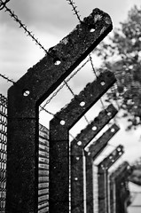 Shooting Capellen-Mamer - 20.08.2016 - 6 (deumter) Tags: luxembourg city black white blackwhite namsa otan nato capellen prison barbed wire fence army europe