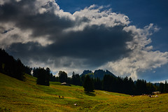 Paturage des mongerons (Meinrad Prisset) Tags: gruyre districtdelagruyre paysage cantondefribourg swissmountains alpes switzerland suisse schweiz swizzera nikon nikond800 d800 afsnikkor2485mmvr captureone9