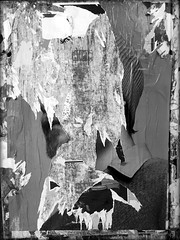once upon a time (PIKTORIO) Tags: beard decollage man berlin germany torn ripped wallpaper street advertising bw blackandwhite piktorio
