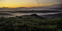 Farmhouse Belvedere. (Massetti Fabrizio) Tags: tuscany toscana belvedere valdorcia sunrise sunlight sanquirico sun rural red pienza phaseone rodenstock siena italia italy fog color
