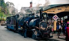 #Darjeeling #ghum #heritage #himalaya #India #Mountains #Old #railway #steamengine #TeaEstate #train #vintage #WestBengal (rammahajan7) Tags: darjeeling ghum heritage himalaya india mountains old railway steamengine teaestate train vintage westbengal