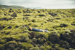 Suurland. (Matthieu Robinet) Tags: iceland nature green greenland mousse moss vert quiet sieste nap landscape alone seul lonely paysage alive asleep sleep island islande south roadtrip repos peaceful colorful lay fog depth deep far infinity eternity frenchphotographer strong rocks outdoor field lava champdelave escape espace space islande2016