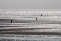 (sammys gallery) Tags: crosby beach mersey sea sefton liverpool unitedkingdom england