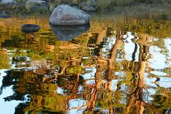 Speglingar (evisdotter) Tags: speglingar reflections trees rocks water morning light sooc skrgrden archipelago nature vrd land