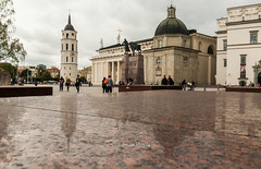 DSC_8652 (Adrian Royle) Tags: lithuania vilnius travel holiday city urban palace cathedral stone reflection