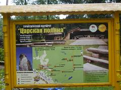 BelovezhskayaPuschaNP021 (tjabeljan) Tags: belovezhskaya pushcha national park belarus oerbos witrusland primarforest np nationalpark primarywood tsar