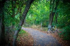 les bicyclettes (Black Hound) Tags: sony a500 johnheinznationalwildliferefuge johnheinznwr landscape bicycles