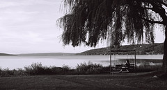 The Lake at Sunset (salsadan101) Tags: film kodak tmax 400 35mm bw monochromatic street photography newyork ithaca city outdoors candid lake water landscape tree person