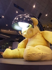 Giant Bear Art Installation (Hamad Airport, Qatar) (Tama Leaver) Tags: giant bear hamad airport installation