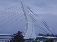 Harp-shaped bridge (seikinsou) Tags: japan spring hikari shinkansen jr railway train shinosaka tokyo tokaido bridge harp shape