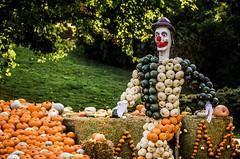 Bale (Melissa Maples) Tags: ludwigsburg germany europe nikon d5100   nikkor afs 18200mm f3556g 18200mmf3556g vr residenzschloss palace blhendesbarock garden summer krbisausstellung pumpkins pumpkin festival sculpture art circus clown