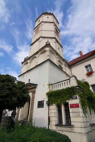 Wieża ratusza w Paczkowie od zachodu