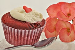sweet inspiration (Happy pre valentines) explore (DOLCEVITALUX) Tags: inspiration cake sweet cupcake euphorbia