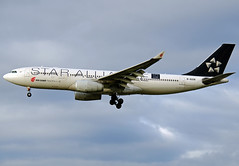 B-6091, Airbus A.330-243, Air China, LHR 14.02.2013 (Skidmarks_1) Tags: heathrow lhr staralliance airbusa330 airchina b6091