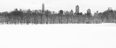 Sheep Meadow, Central Park - Explore #72 (BrianEden) Tags: city nyc trees winter snow ny newyork cold field frozen flickr centralpark manhattan meadow freezing explore sheeps uppereastside vast sheepmeadow