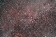IC1318 area with CLS filter (s58y) Tags: photoshop canon contax astrophoto cls astrophysics carlzeiss 500d canon500d ngc6888 astroimaging ic1318 astrophography ap900 gammacygni registar imagesplus canoneosutility eosutility astroimage Astrometrydotnet:status=solved astronomik carlzeiss85mmf28 t1i canont1i photoshopcs5 astronomikcls astronomikclsfilter Astrometrydotnet:version=14400 contax85mmf28 astrophysicsap900 Astrometrydotnet:id=alpha20130202326682 contaxyashica85mmf28