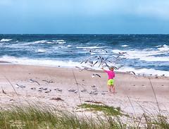 Feeding time... (Greg--R) Tags: ocean seagulls beach lady canon feeding florida seagull melbournebeach surg canonef24105mmf4lisusm canoneos5dmarkii