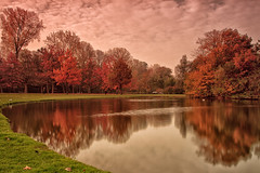 Autumn Colours (Usuf Islam) Tags: park city travel autumn trees panorama lake holland colour tree nature netherlands leaves amsterdam clouds landscape pond europe natural capital 7d various atmospheric vondolpark canon7d
