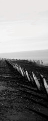 Spurn Point Project (Alex Tanton) Tags: lighthouse white black beach sign point photography panoramas depth feild groins spurn