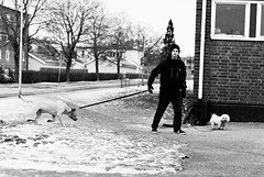 Dragged (dennisdasfoto) Tags: blackandwhite bw man dogs blackwhite sweden schweden streetphotography sw mann sverige hunde hundar svartvitt kristinehamn schwarzweis gatufotografi strasenfotografie
