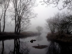 Scheeeler Mhle (saltacornu) Tags: water misty fog river wasser nebel bach fluss wmme iphone rotenburg niedersachsen scheessel neblig saltacornu uploaded:by=flickrmobile flickriosapp:filter=nofilter