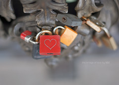 The bridge of love Pars (idni . idniama) Tags: bridge red love fence 50mm nikon heart padlock gettyimages pars candado 2013 idni