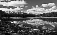 Serenity (CNorth2) Tags: park travel autumn sky bw usa white black mountains reflection heron clouds canon still pond grand national shore serenity waters wyoming teton g11 photocontesttnc13