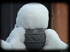 Schneemütze - snow cap