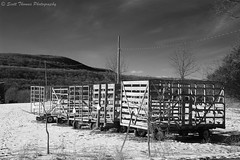 Hay Wagons in Winter (Scottwdw) Tags: travel trees winter vacation sky white snow newyork black field clouds rural wire nikon hills valley poles hay wagons route11 route11a onondagacounty d700 scottthomasphotography afsnikkor28300mmf3556gedvr