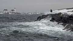 Daring angler (Birgit F) Tags: ocean sea lighthouse norway norge fisherman waves photowalk skagerrak homborsund angler skerries grimstad austagder kalvehageneset homborsundfotoklubb
