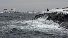 Daring angler (Birgit F) Tags: ocean sea lighthouse norway norge fisherman waves photowalk skagerrak homborsund angler skerries grimstad austagder kalvehageneset homborsundfotoklubb