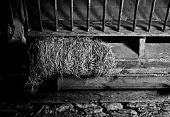 bale (Jen MacNeill) Tags: york light shadow blackandwhite pennsylvania farm pa feed hay bale livestock gypsymarestudios jennifermacneilltraylor jmacneilltraylor
